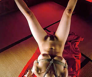 Category: japanese bondage