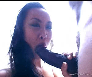 Asians animated GIF